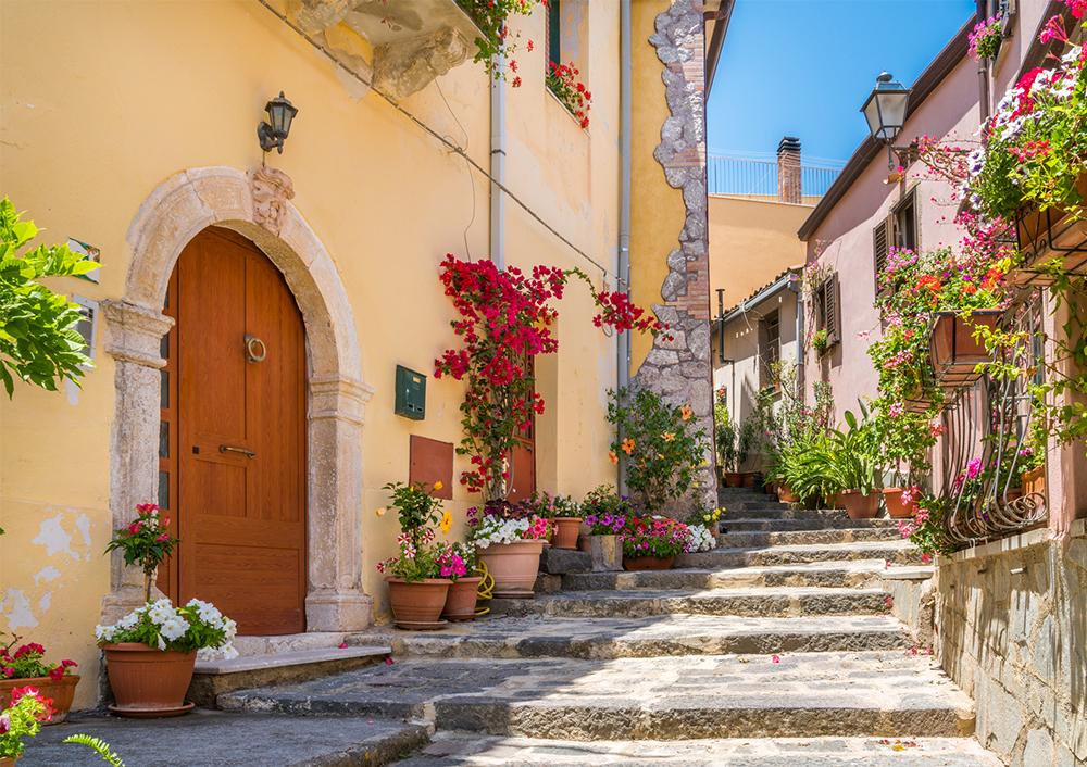 On voit une allée piétonnière en marche, avec beaucoup de pots de fleurs et une porte en bois.